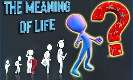What Is The Meaning Of Life (Video)